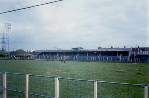 Plough Lane Horse by Sarflondondunc on Flickr
